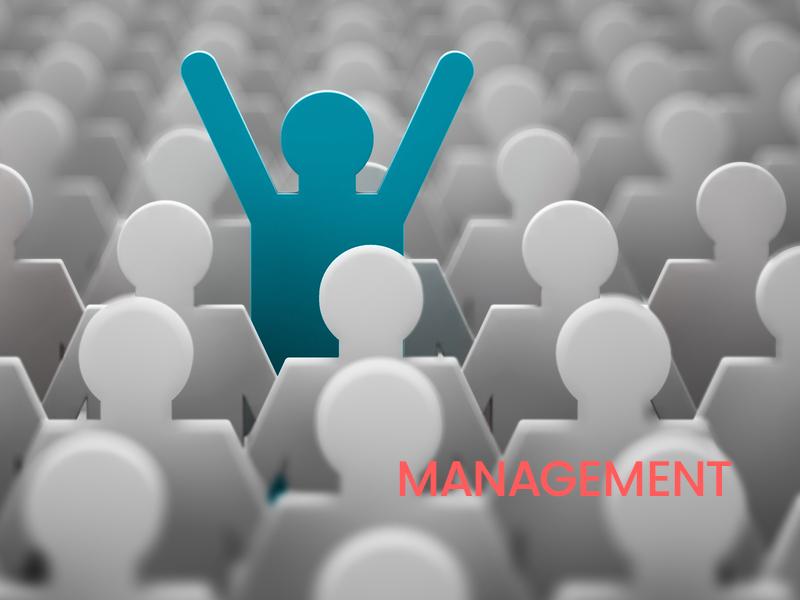Les fondamentaux du management, ça s'apprend